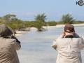 IMGL2636 - Birding in Cuba