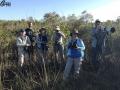 Birding In Cuba - February 4
