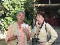 Birding in Cuba - October 2