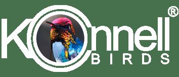Kirkconnell Birds